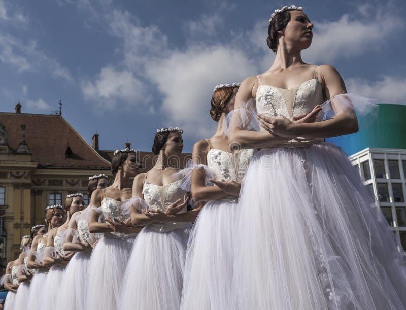 Klassiek ballet stock afbeelding