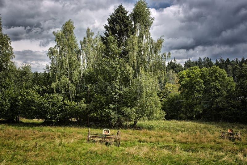 Klassiek Pools landschap royalty-vrije stock afbeelding