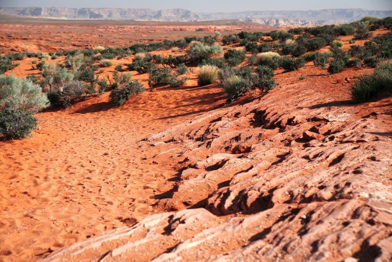 Klassieke Amerikaanse prairie stock afbeeldingen