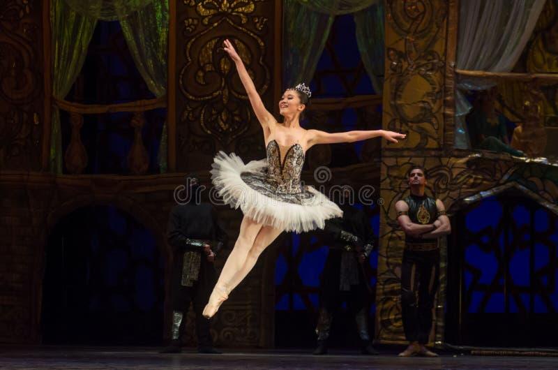 Klassieke balletzeerover stock fotografie
