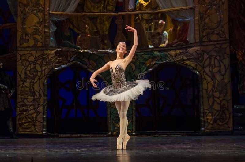 Klassieke balletzeerover stock afbeeldingen