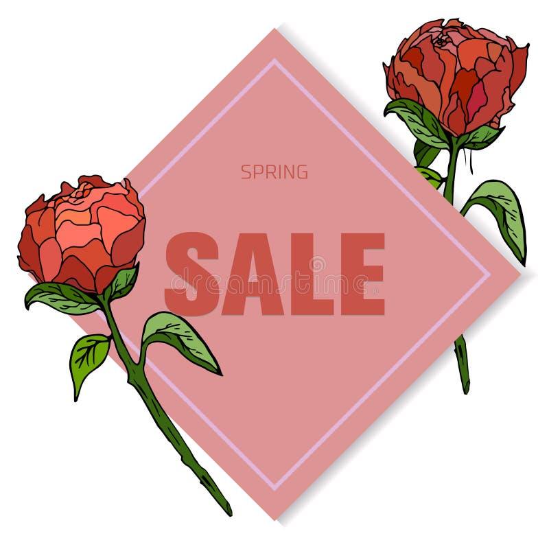 Klassieke bloemenverkoopkaart, botanische vectorillustratie royalty-vrije illustratie