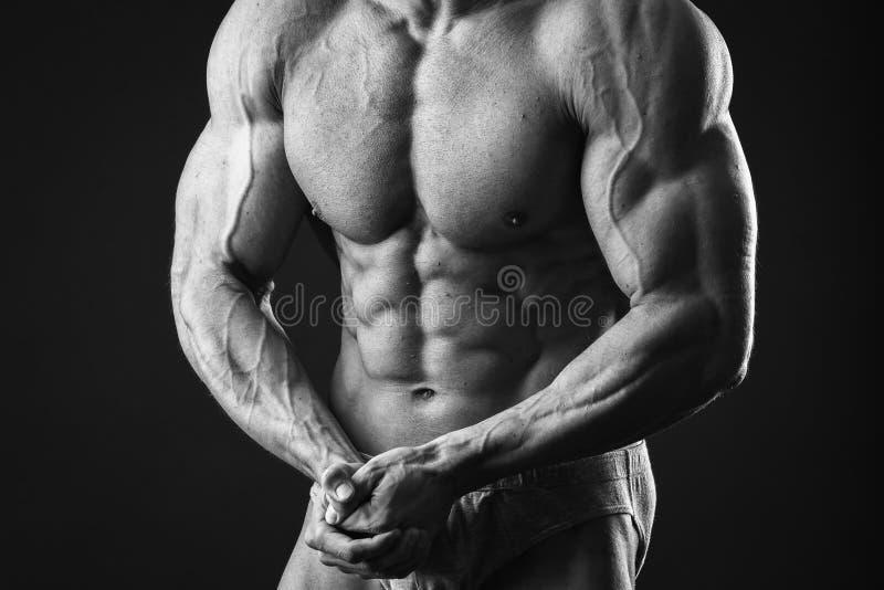 Klassieke bodybuilder stock afbeelding