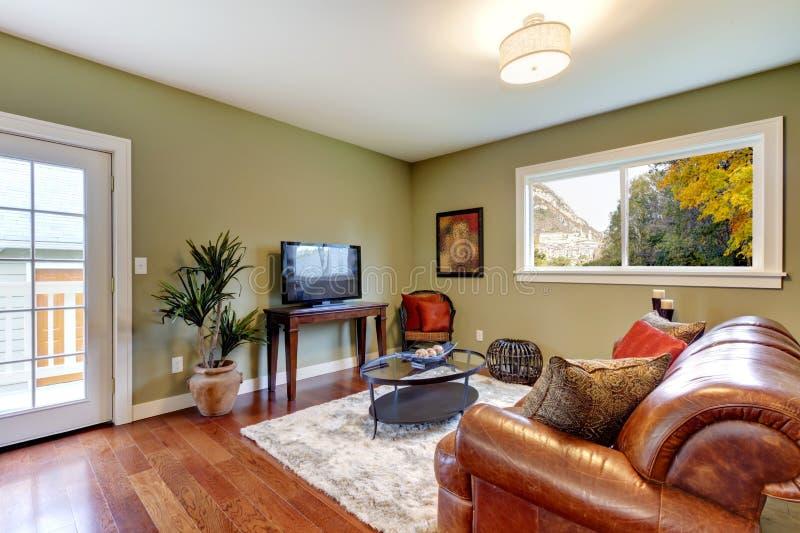 Klassieke groene natuurlijke woonkamer. stock foto's