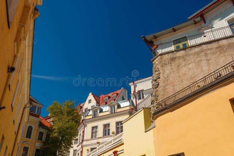 Klassieke mening over de daken en de huizen in de Oude stad van Tallinn, Estland royalty-vrije stock afbeelding