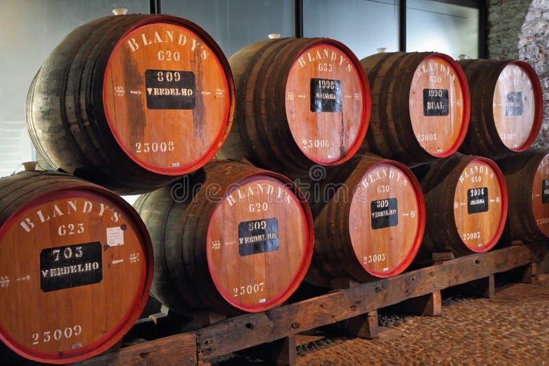 Klassieke reusachtige eiken vaten wijn Madera royalty-vrije stock fotografie