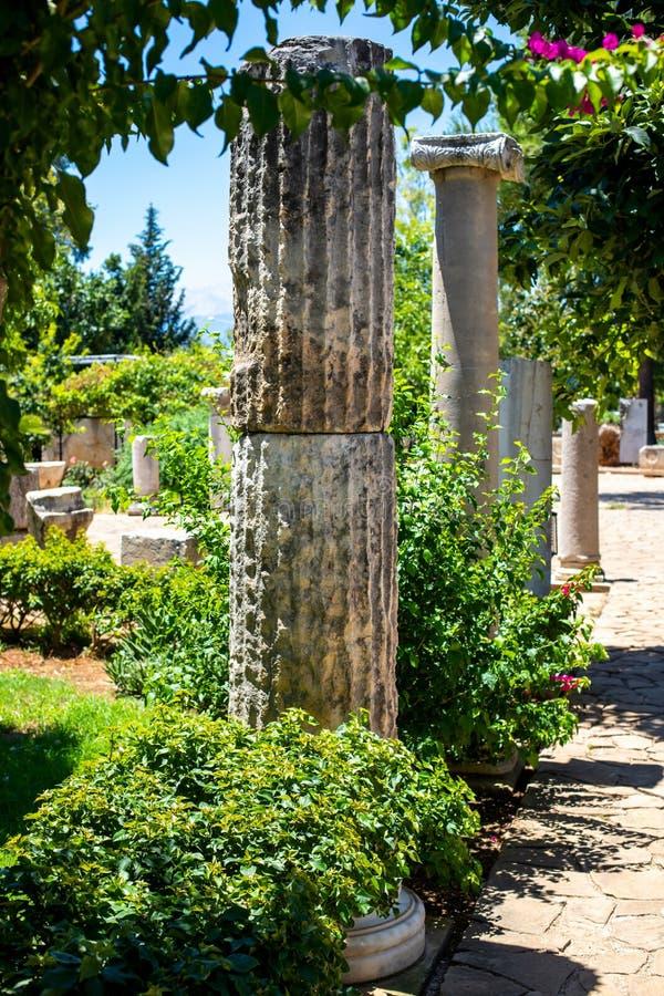 Klassieke Roman kolommen in de tuin Een schilderachtige steeg met antieke decoratie De architectuur van oud Rome stock foto's