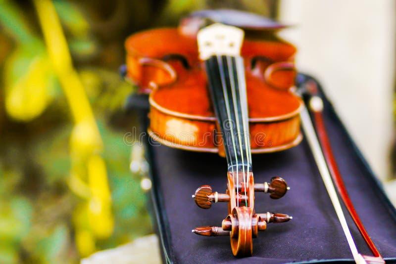 Klassische hölzerne Geige in einem Weding stockfotografie
