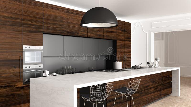 Klassische Küche im Weinleseraum mit Formteilwand, Luxusinnenarchitektur stock abbildung