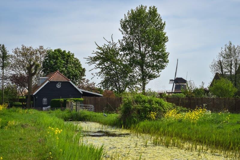 Klassische Szene mit Kanal, Bauernhof und Windmühle in der niederländischen Landschaft im Frühjahr stockbilder