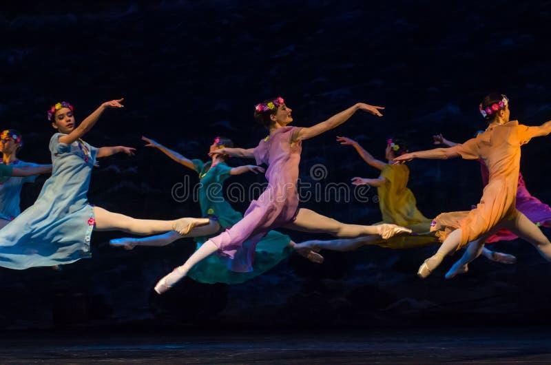 Klassisches Ballett Seeräuber lizenzfreie stockbilder