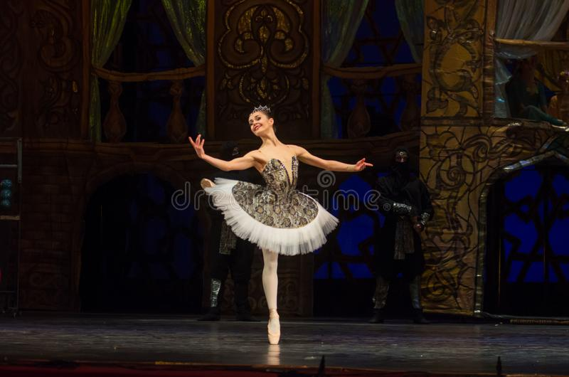 Klassisches Ballett Seeräuber stockfotografie