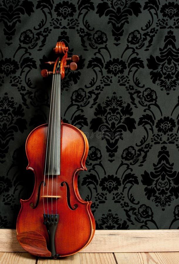 klassisk fiol royaltyfria foton