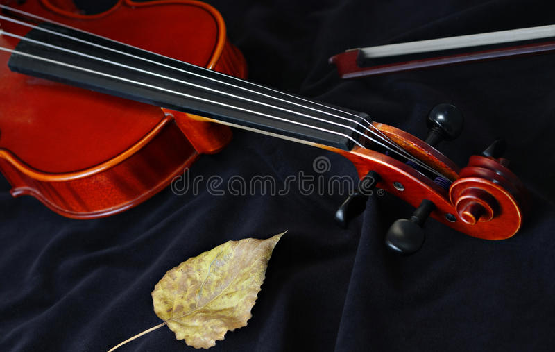 klassisk instrumentradfiol arkivfoto
