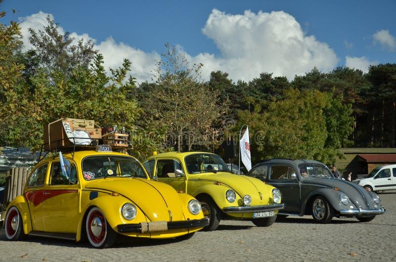 Klassisk Volkswagen utskjutande bil royaltyfri bild