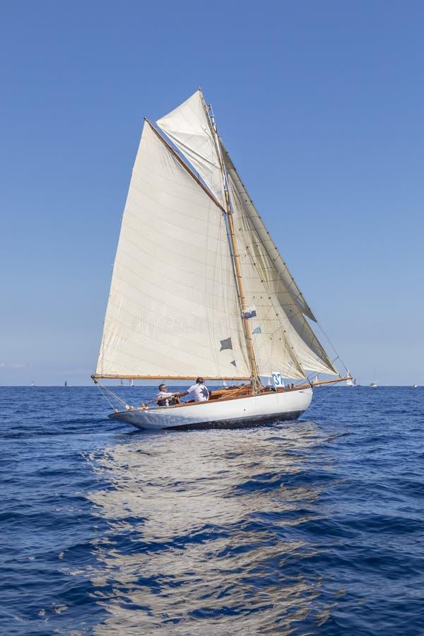 Klassisk yachtregatta - Gaff skärare ' STAR' 1907 royaltyfria foton