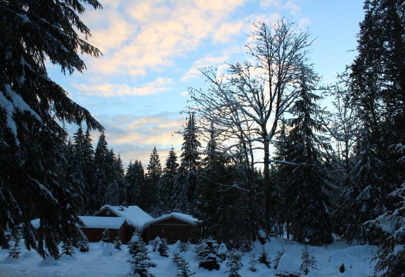 Klasyczna Kanadyjska zima fotografia royalty free
