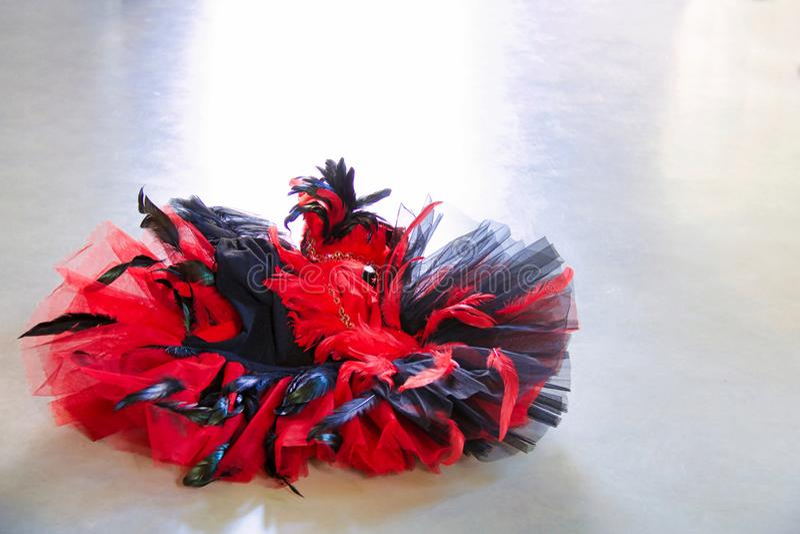 Klasyczna spódniczka baletnicy czerwień, czerń z upierzeniem odizolowywającym na popielatym i zdjęcia royalty free