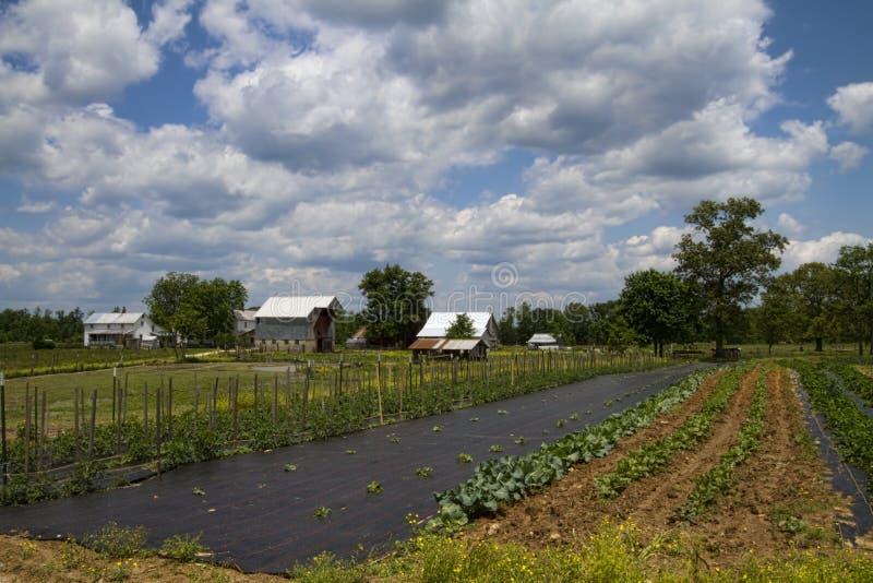 Klasyczny Amish gospodarstwo rolne, ogród i fotografia royalty free