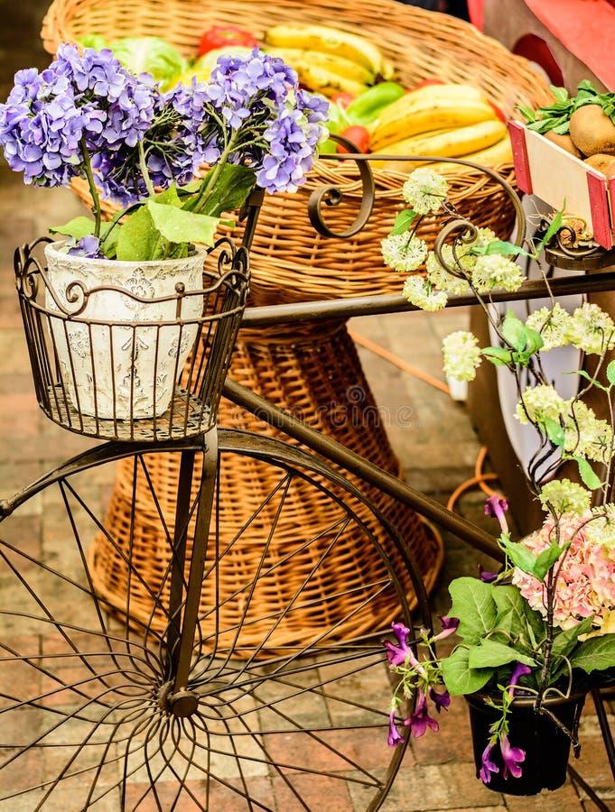 Klasyczny bicykl obraz royalty free