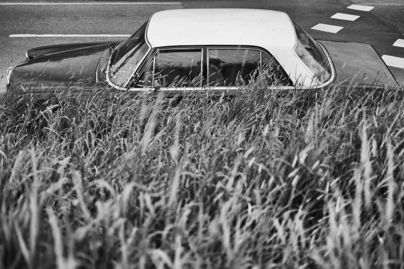 Klasyczny Mercedez 280 S boczny widok zdjęcia stock