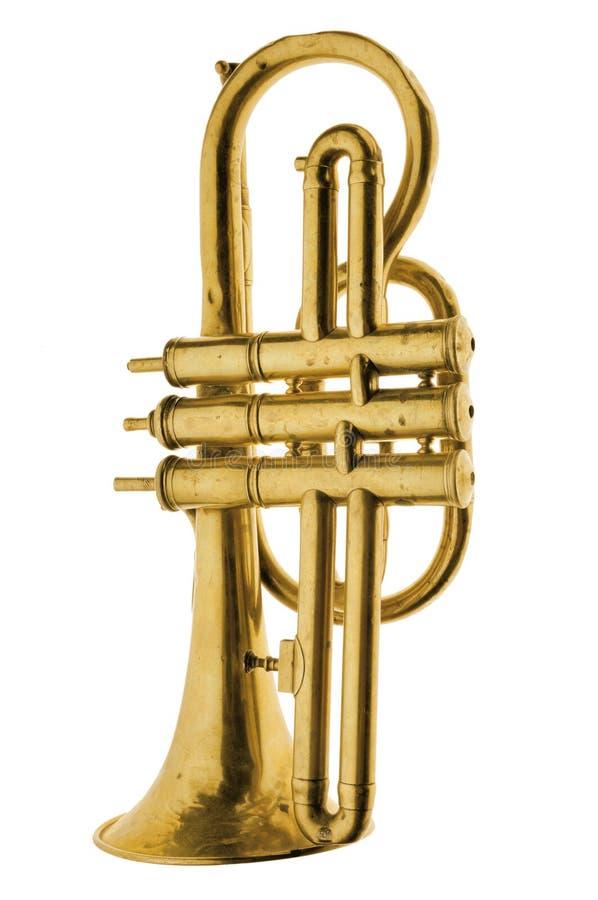 klasyczny złoto na trąbce zdjęcie stock