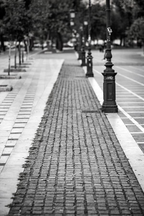Klasyk Stylowa Czarna Biała fotografia Stary park, używać bardzo sha zdjęcie stock