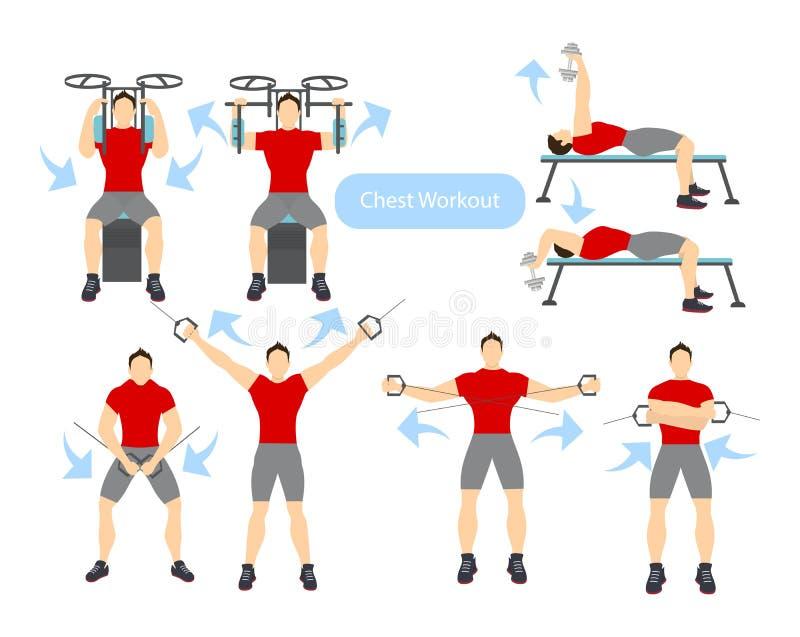 Klatka piersiowa treningu set royalty ilustracja