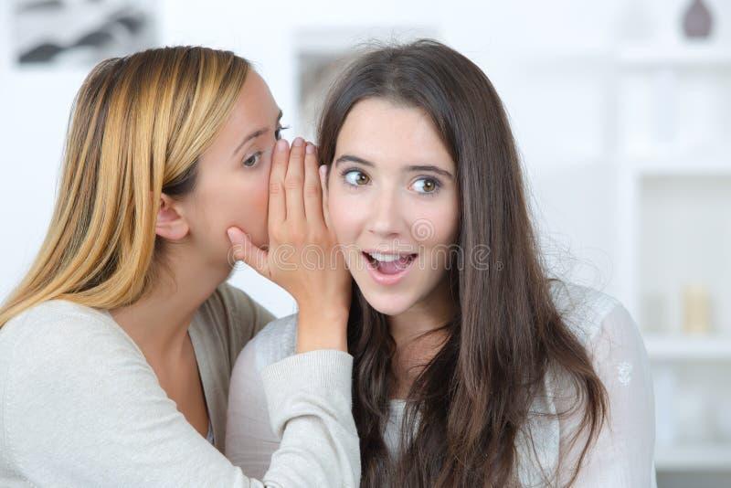 Klatschmädchen sagt dem Freund Geheimnis stockfotografie