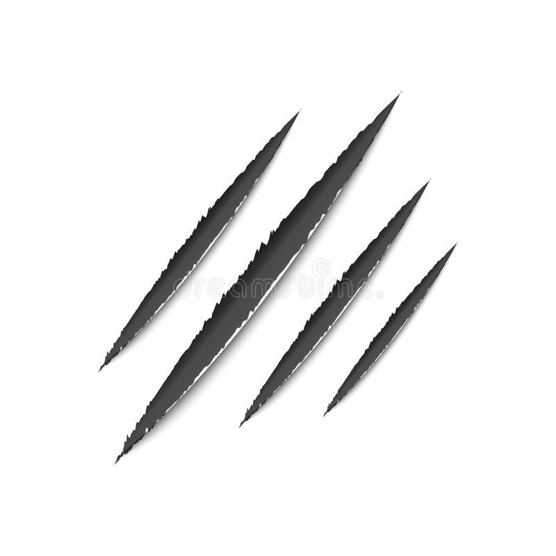 Klauw van Dier, Kras Vector stock illustratie