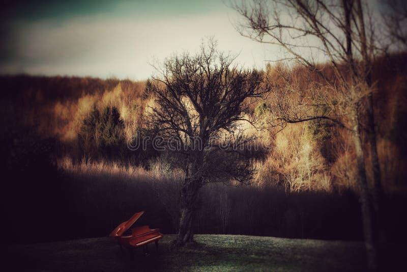 Klavier unter dem Baum stockfoto