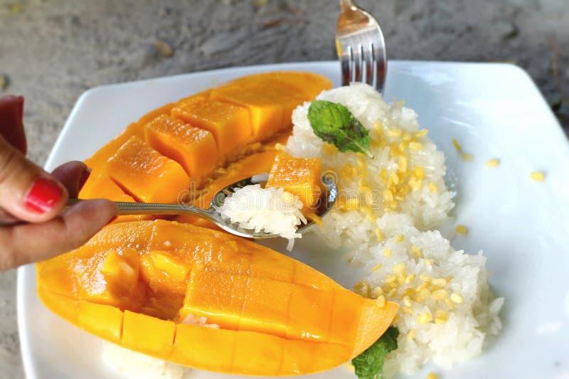 Klebriger Reis mit Kokosmilchmischung und reifer Mango lizenzfreie stockfotografie