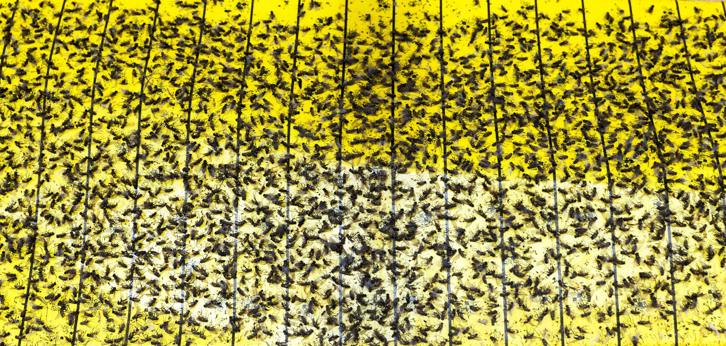 Klebriges Band lizenzfreies stockbild