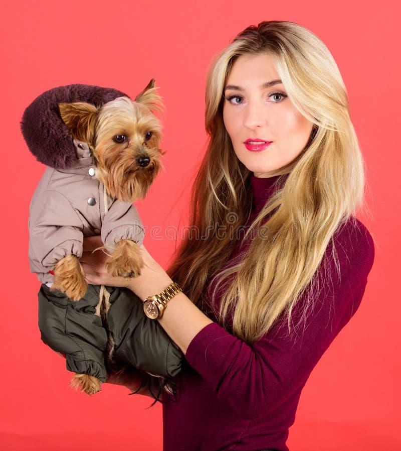 kleding en toebehoren Welke hondrassen lagen zouden moeten dragen Meisjesomhelzing weinig hond in laag De vrouw draagt de terriër stock afbeelding