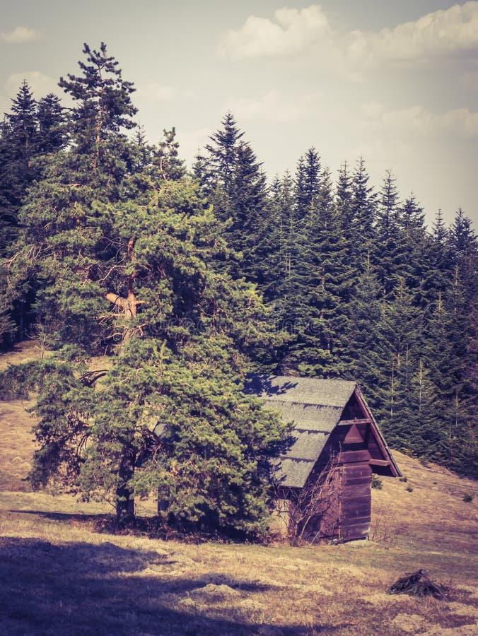 Klein blokhuis onder een boom in de bergen royalty-vrije stock foto