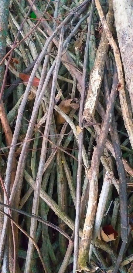 Klein droog brandhout voorbereidingen getroffen voor het verwarmen van het huis Brandhout voor het verwarmen in de winter wordt g stock fotografie