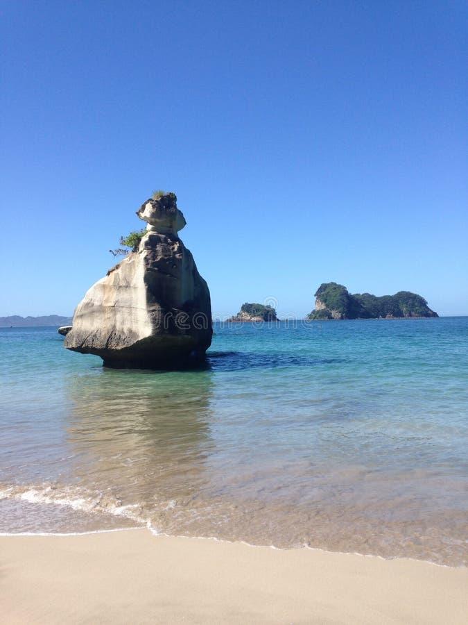 Klein eiland in Nieuw Zeeland stock foto's