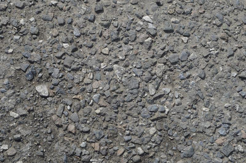 Klein grint in het grijze asfalt stock afbeelding