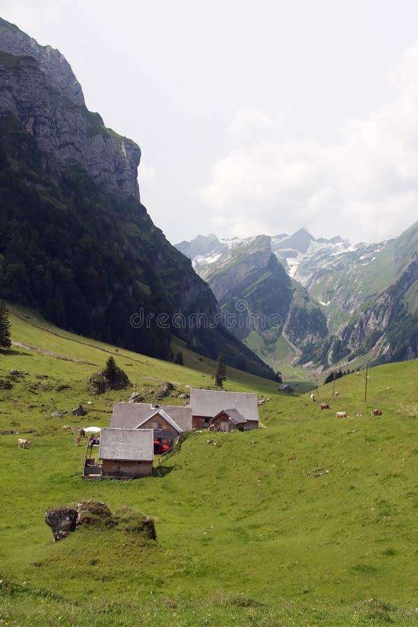 Klein landbouwbedrijf in Zwitserse alpen stock afbeelding