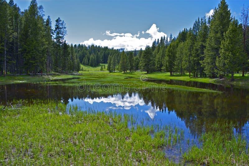 Klein Meer Yellowstone stock afbeeldingen