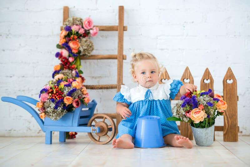Klein peuter mooi meisje in blauwe kleding met een emmer en een kar van bloemen in de mooie tuin van het studiolandschap Weinig t royalty-vrije stock afbeelding