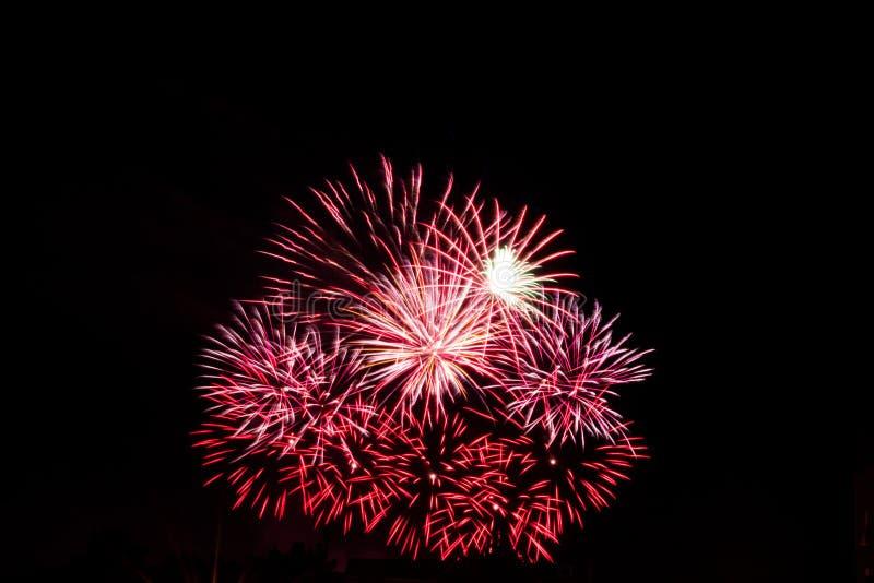 Klein rood vuurwerk royalty-vrije stock fotografie