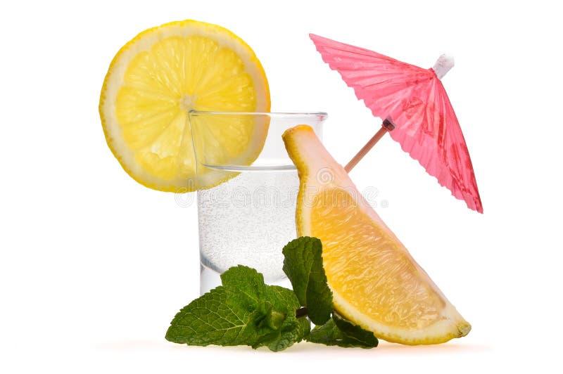 Klein schot met alcohol, pepermuntbladeren, stukken van citroen en decoratieve cocktailparaplu royalty-vrije stock afbeelding