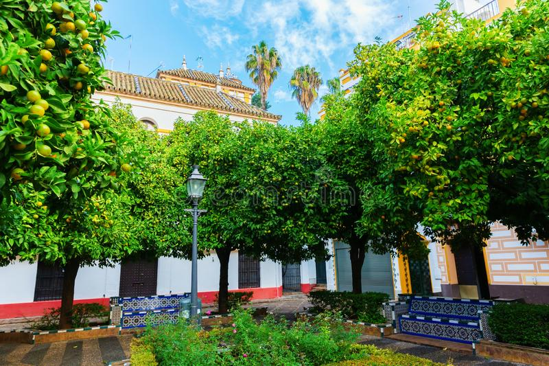 Klein vierkant in Santa Cruz, Sevilla, Spanje stock foto