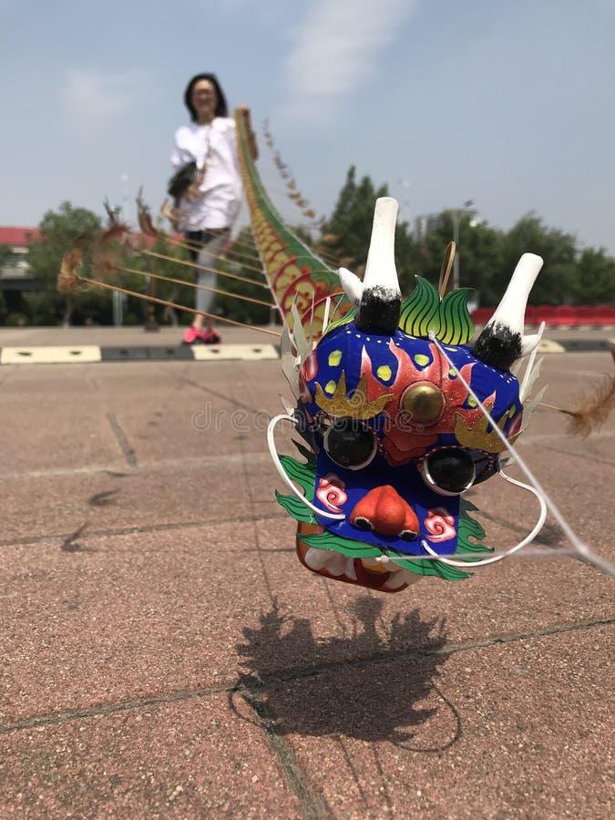Klein vom chinesischen traditionellen Bibcockhundertfüßerdrachen stockbilder
