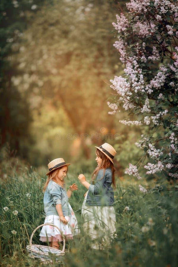 Klein zusters openluchtportret dichtbij lilac boom royalty-vrije stock afbeeldingen