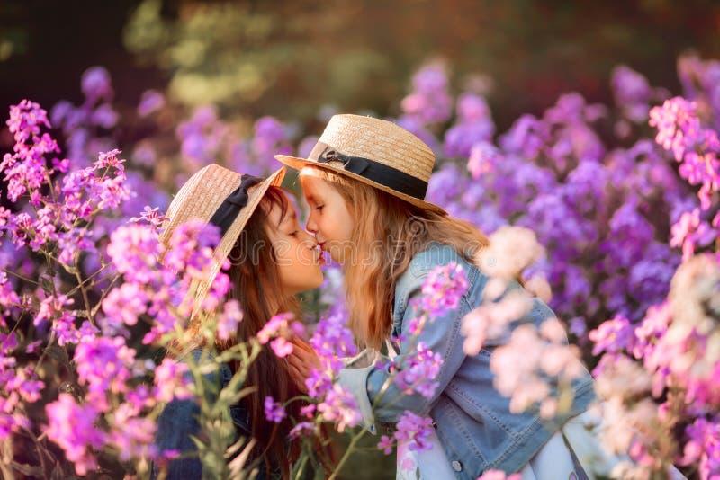 Klein zusters openluchtportret in een roze weide royalty-vrije stock afbeeldingen