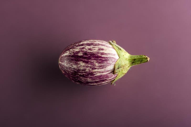 Kleine aubergine of aubergine op violette achtergrond royalty-vrije stock fotografie