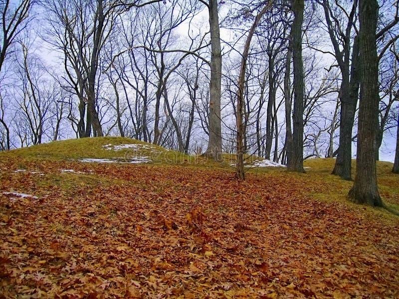 Kleine Bärn-Berg-Gruppe an der Zündtemperatur, Bildnis-Hügel-Nationaldenkmal, Iowa stockbilder
