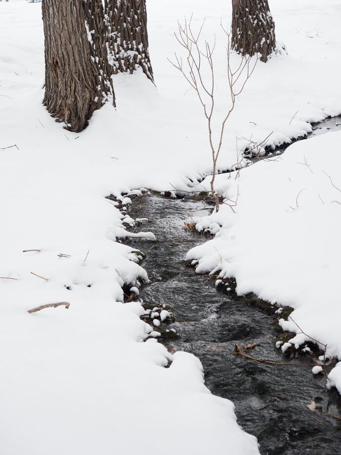 Kleine Beek in Sneeuw met boomboomstammen op de achtergrond royalty-vrije stock foto